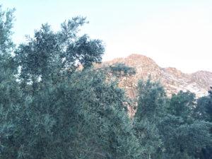 monte sinaí moises monasterio santa catalina 04