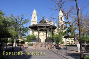 plaza zaragoza pet friendly