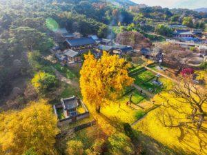 10-seowon-korean-neo-confucian-academies-korea-29-Nuevos-lugares-Patromonio-de-la-Humanidad