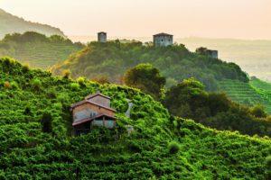 14-le-colline-del-prosecco-conegliano-valdobbiadene-italy-29-Nuevos-lugares-Patromonio-de-la-Humanidad