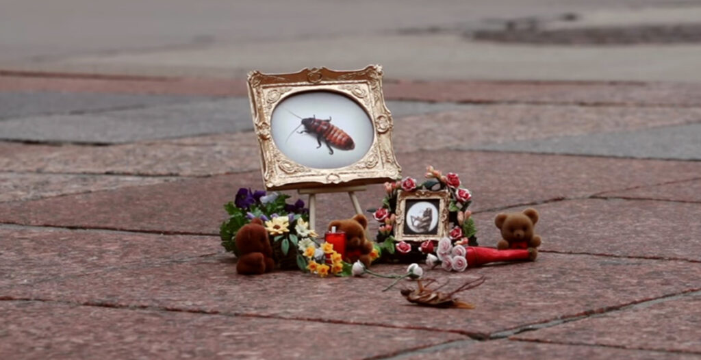carmichael-colective-bug-memorial