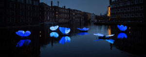Butterfly-effect-amsterdam-light-festival