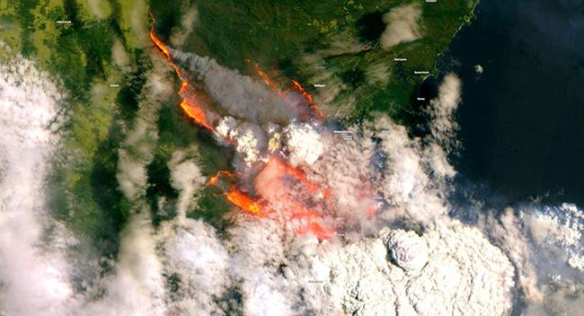 incendios-en-australia-mundo.spuntniknews.com