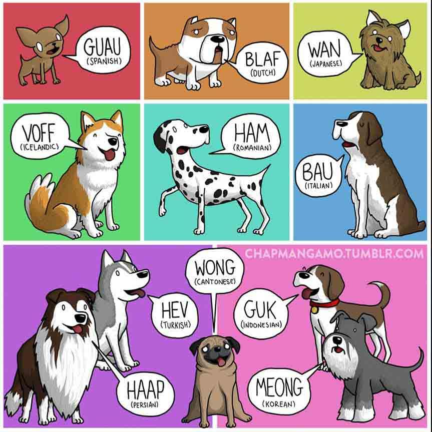 james-chapman-los-perros-no-ladran-igual-en-todos-los-paises-mobile