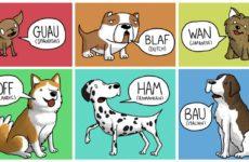 james-chapman-los-perros-no-ladran-igual-en-todos-los-paises
