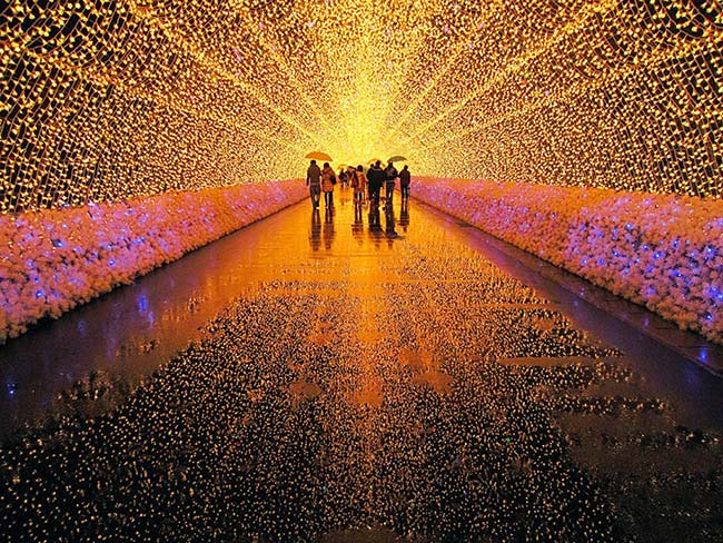 lights-of-japan-un-espectaculo-luminoso-en-la-cdmx