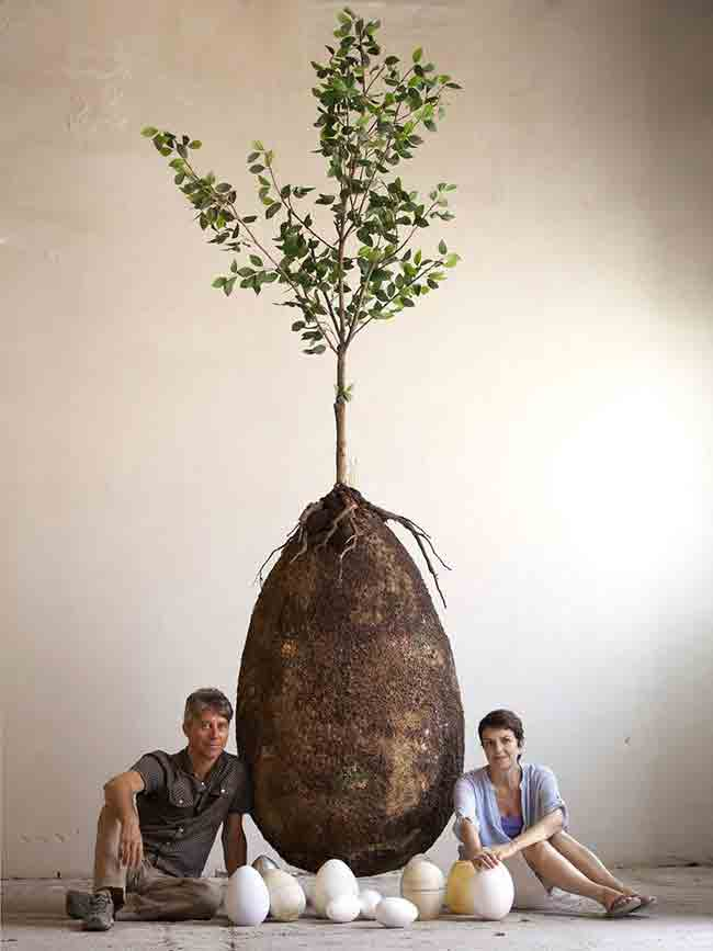 capsula-mundi-un-ataud-organico-que-tranformara-un-cadaver-en-un-arbol