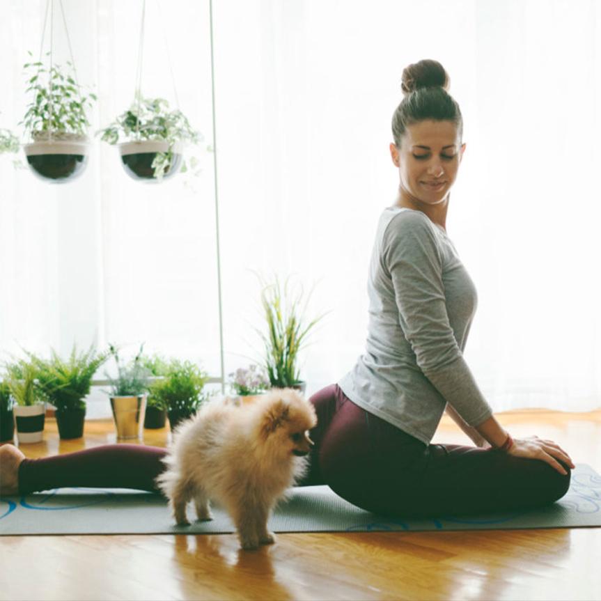 3-opciones-para-hacer-yoga-en-casa-online-mobile