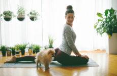 3-opciones-para-hacer-yoga-en-casa-online