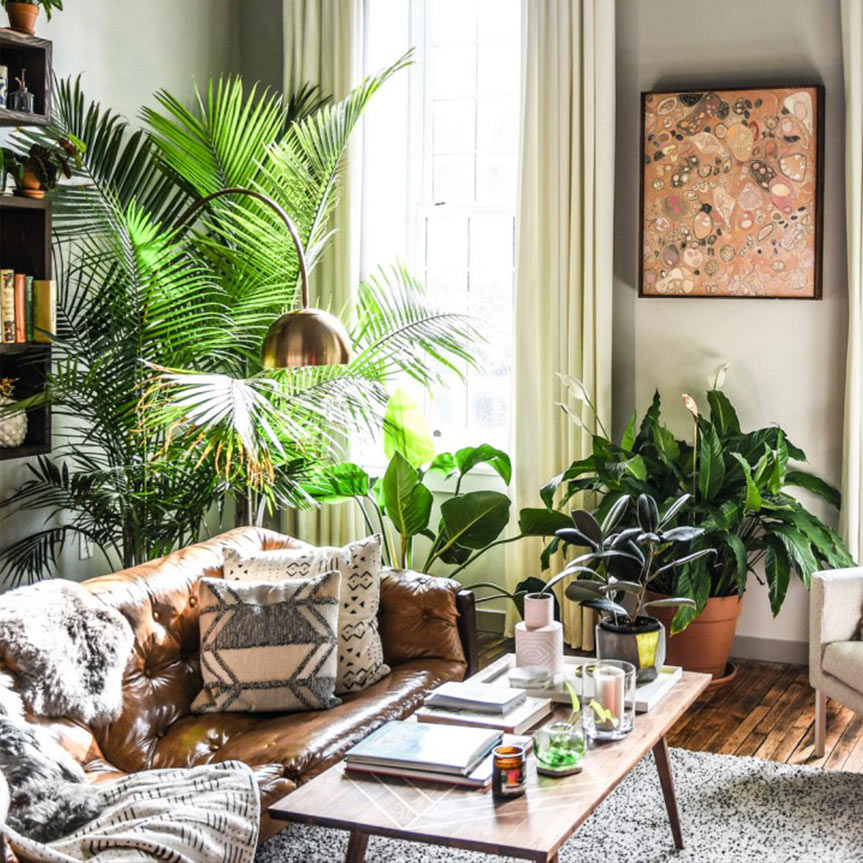 5-beneficios-plantas-casa-mobile