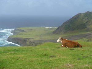 Tristan da Cunha 1024x768 1