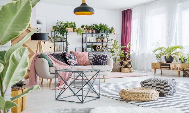 5-beneficios-plantas-casa