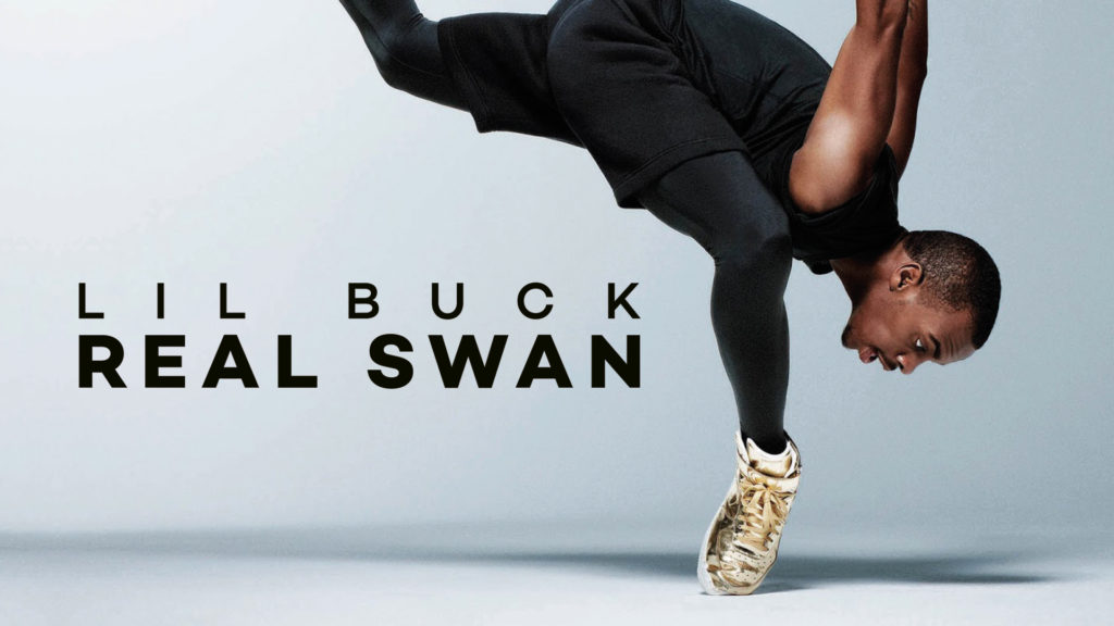 The Real Swan Documental