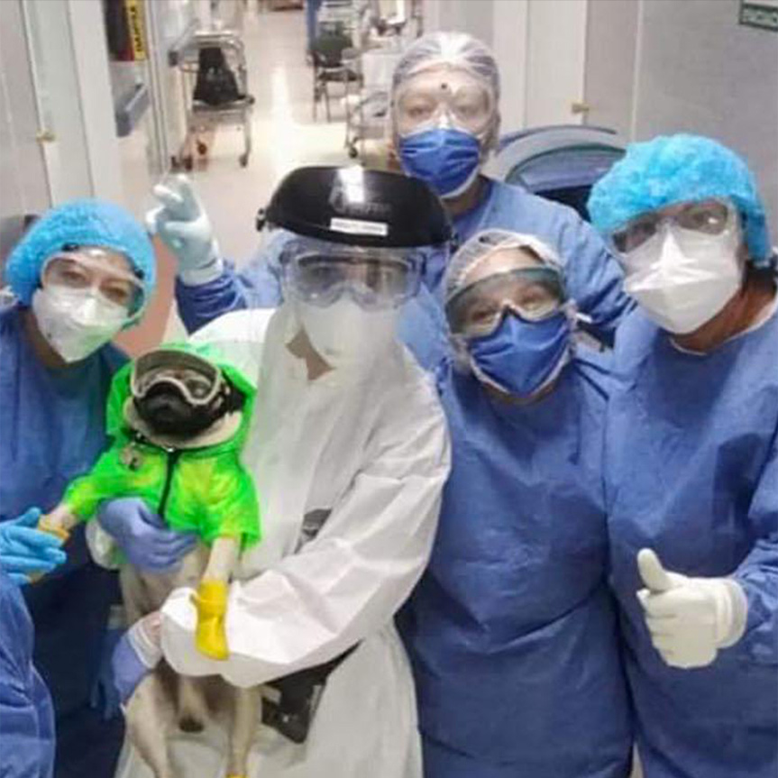 harley-el-tuerto-auxilia-a-los-medicos-y-enfermeras-que-padecen-de-ansiedad-mobile