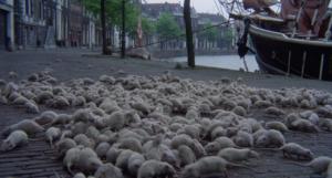 Nosferatu - Herzog, Kinski 1979 - las ratas
