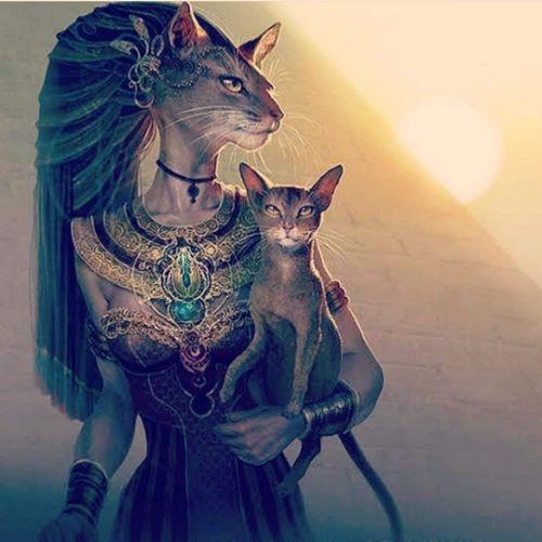 gatos-egipto