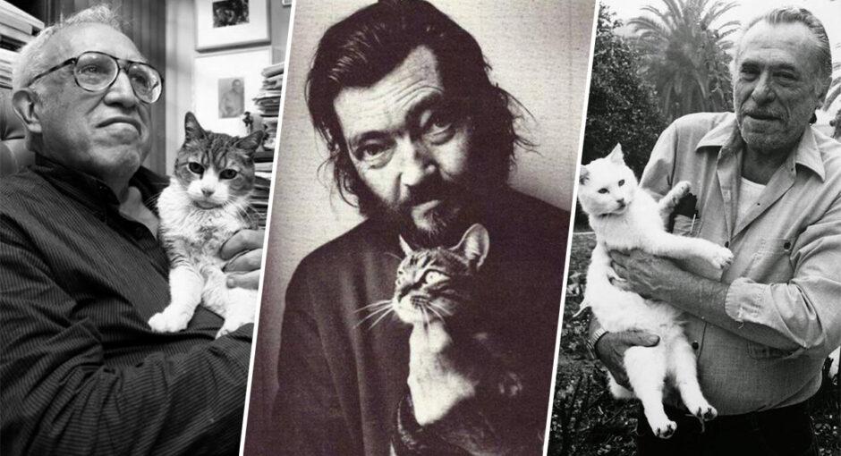 gatos-de-grandes-escritores