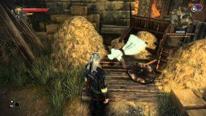Witcher_2_Assassins_Creed