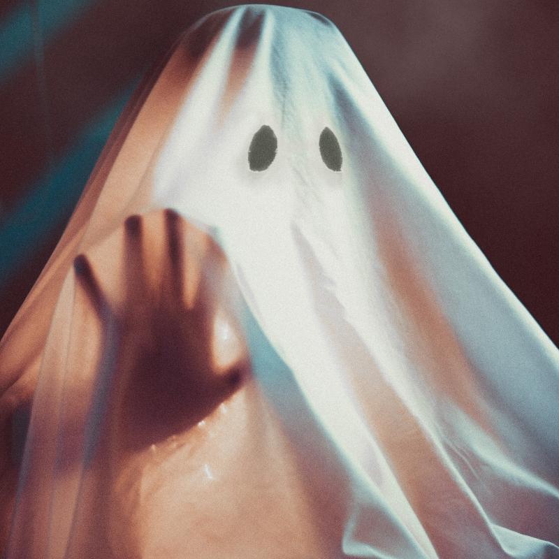 Especial del Terror Fantasma