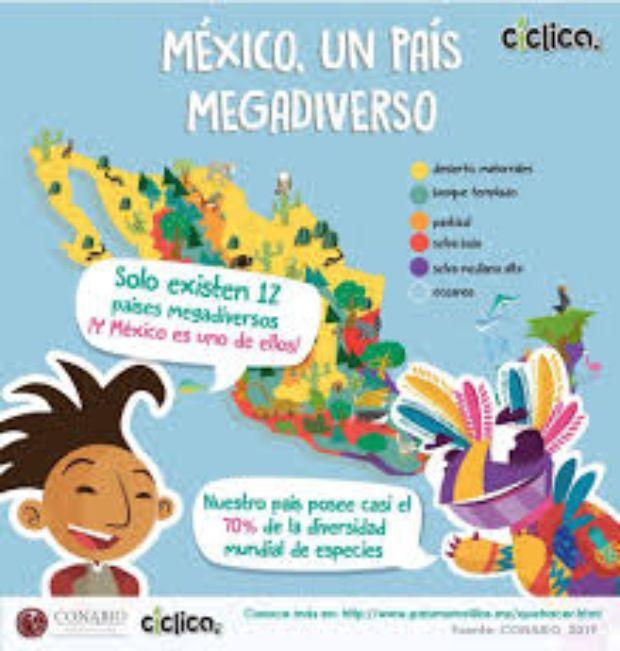 desperdicio-de-comida-contaminacion-pobreza-hambre-mexico-megadiverso-mexicanos-desperdician-comida