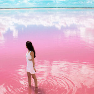 las-coloradas-mar-rosa-de-mexico