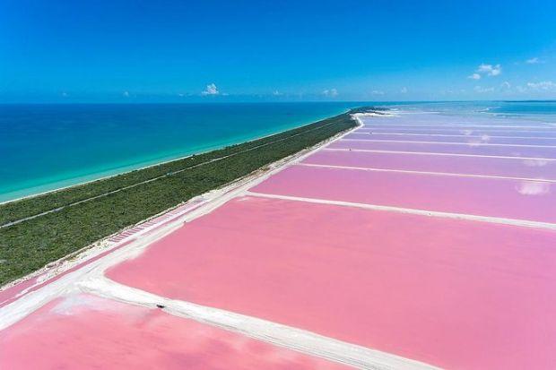 las-coloradas-mar-rosa-de-mexico