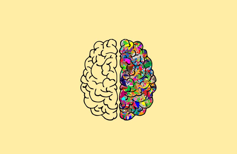 Neuronas... ¿Para qué sirve nuestro Sistema Nervioso?