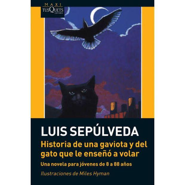 historia-gato-gaviota