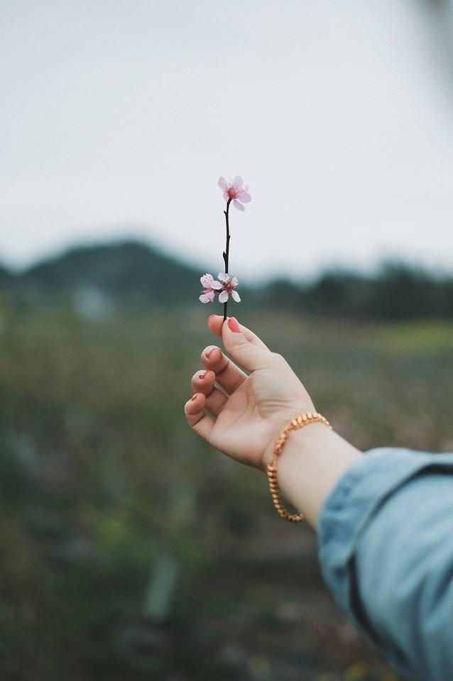 7 enseñanzas filosóficas que te ayudaran a terminar el 2020 con una mejor salud mental
