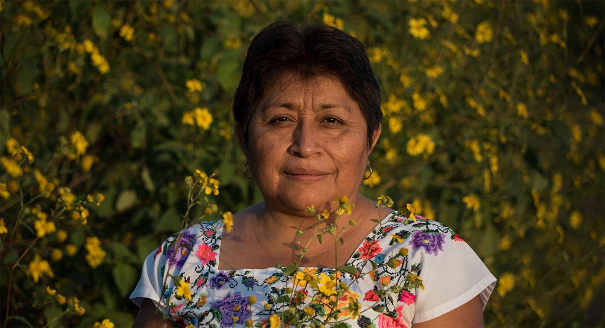 leydy-pech-dama-de-la-miel-premio-nobel-del-medio-ambiente-2020