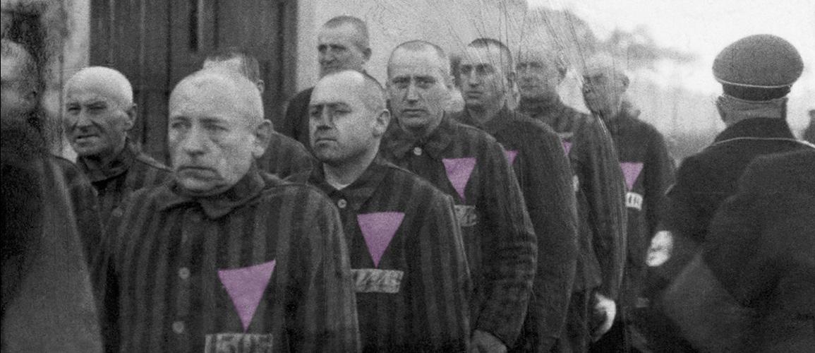 triangulos-rosas-victimas-olvidadas-homocausto-nazi