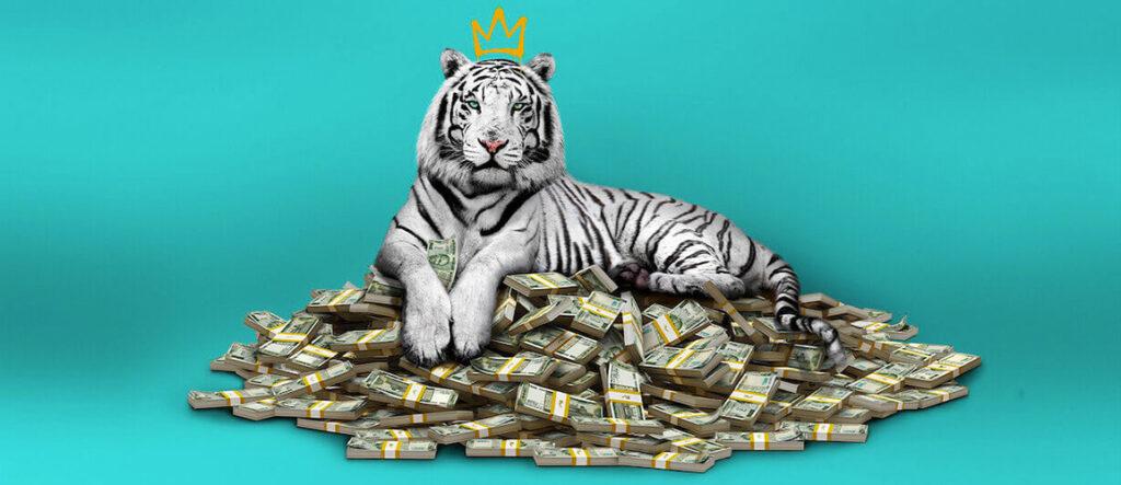 tigre-blanco-parasite-netflix