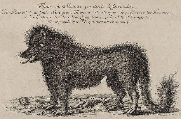 La-bestia-de-Gevaudan-devoradora-de-humanos-Real-o-mito