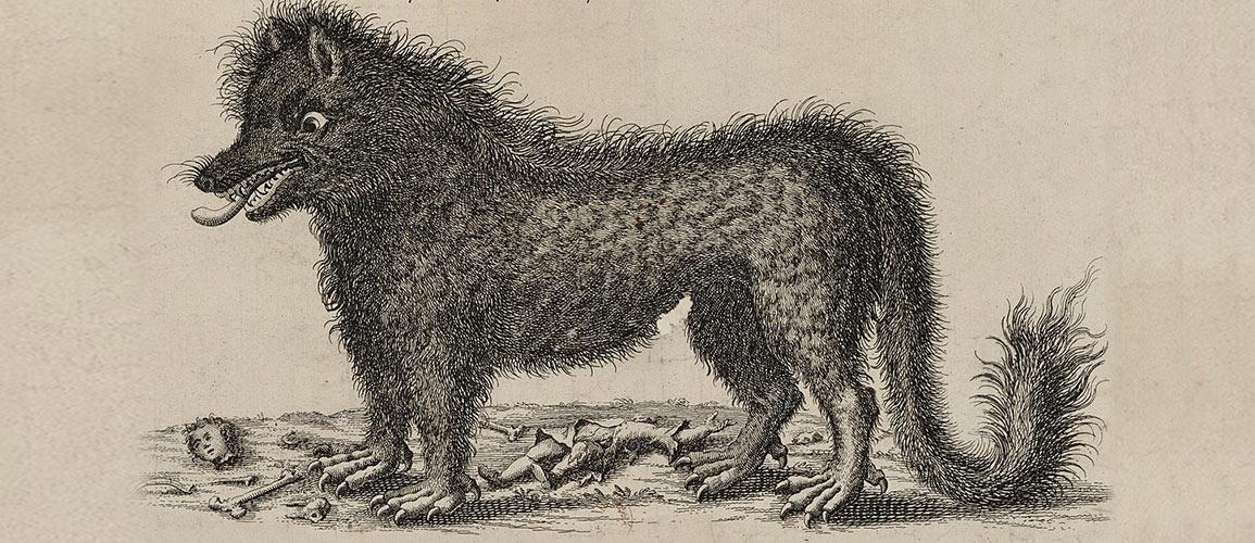 bestia-de-gevaudan-devoradora-de-humanos